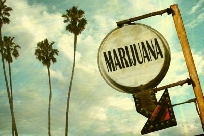 blog_Legalization Campaign Takes Off In California