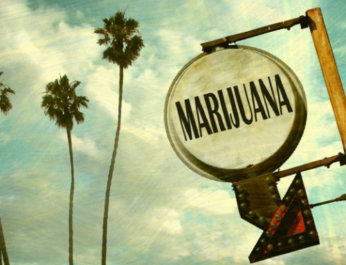 Legalization Campaign Takes Off In California