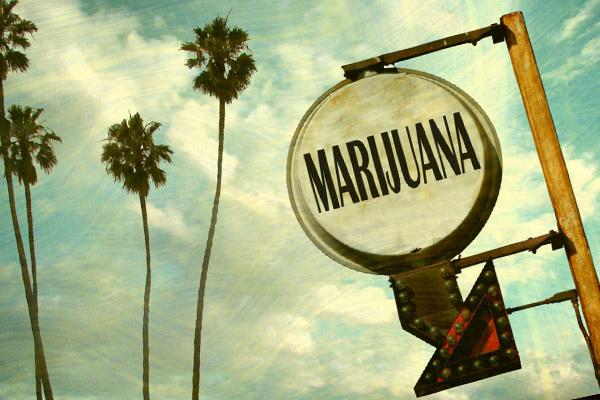 blog_Legalization Campaign Takes Off In California