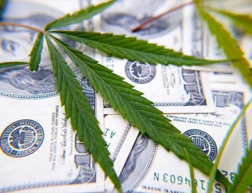 Banking Group Surveys Members To Highlight Need For Legal Clarity On Marijuana Banking