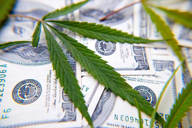 Ama surveys banks cannabis