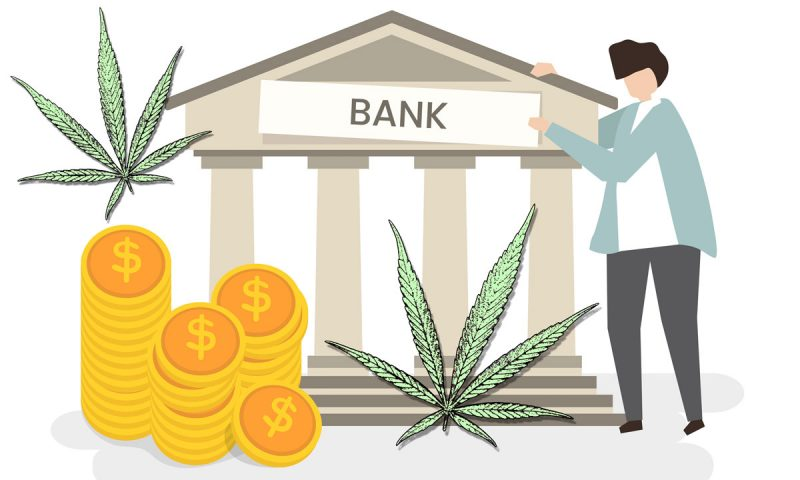 how to get a cannabis bank account