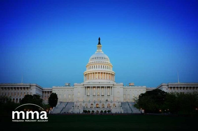cannabis business lobby states act
