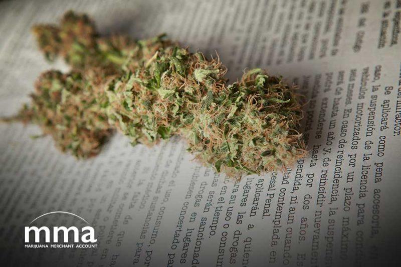 marijuana banking bill in motion